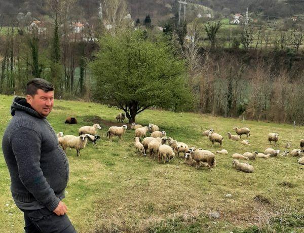 Priče uspješnih klijenata – Mefid Aljić